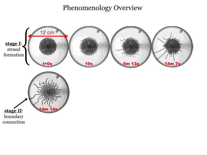 Phenomenology Overview