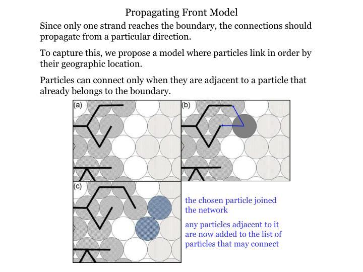 Propagating Front Model