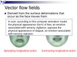 vector flow fields