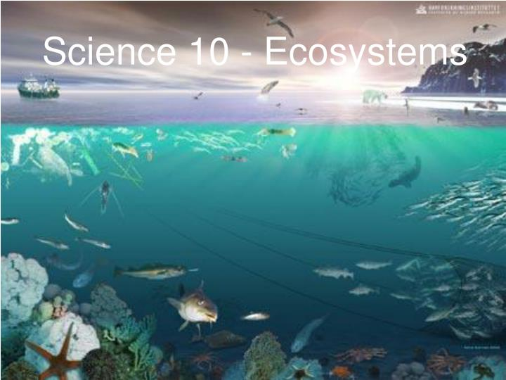 science 10 ecosystems
