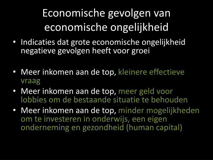 Economische gevolgen van economische ongelijkheid