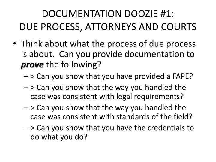 DOCUMENTATION DOOZIE #1: