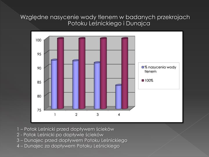 Względne nasycenie wody tlenem w badanych przekrojach Potoku Leśnickiego i Dunajca
