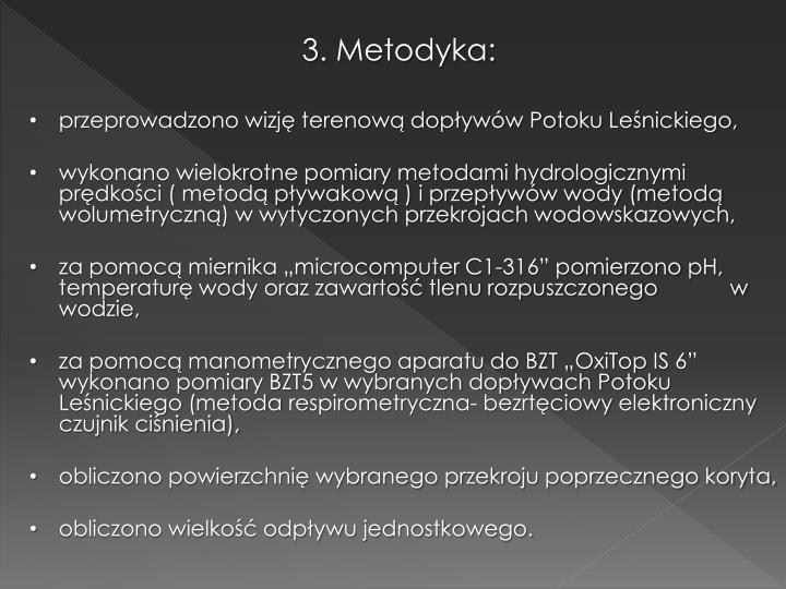 3. Metodyka:
