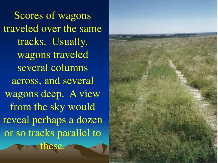 Scores of wagons traveled over the same tracks.  Usually, wagons traveled several columns across, and several wagons deep.  A view from the sky would reveal perhaps a dozen or so tracks parallel to these.