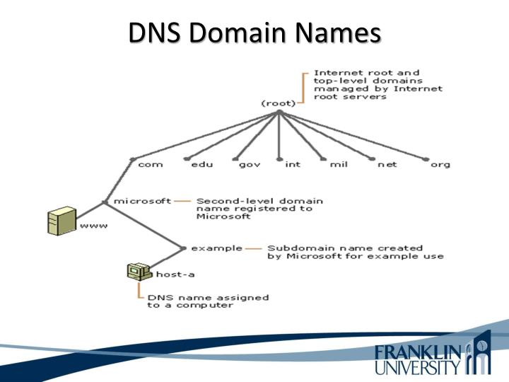 Dns domain names