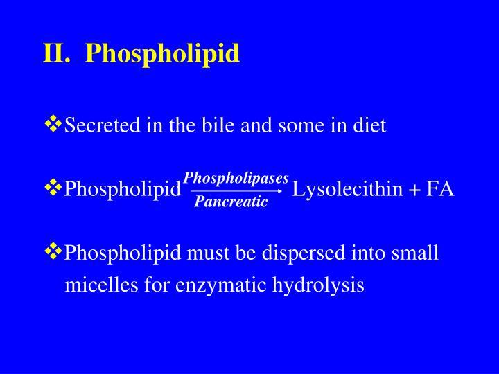 II.  Phospholipid