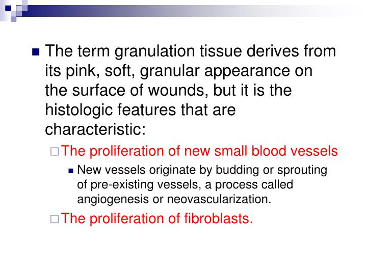 The term granulation tissue derives from its pink, soft, granular appearance on the surface of wounds, but it is the histologic features that are characteristic: