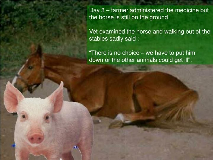 Day 3 – farmer administered the medicine but the horse is still on the ground
