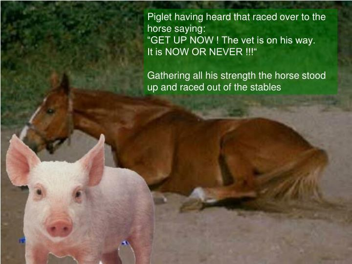 Piglet having heard that raced over to the horse saying