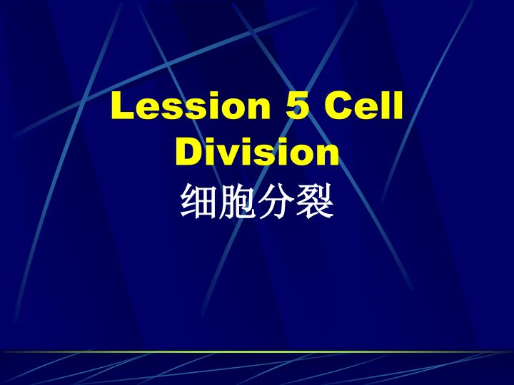 lession 5 cell division n.