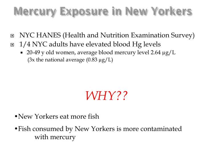 Mercury Exposure in New Yorkers