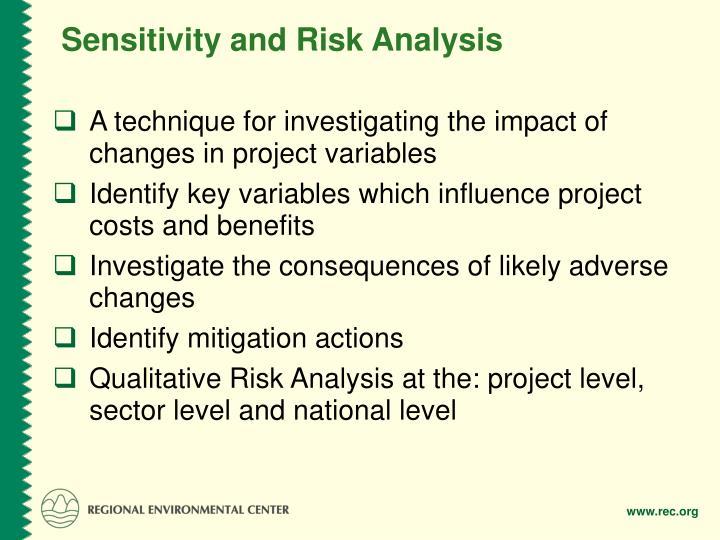 Sensitivity and Risk Analysis