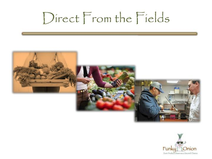 Direct From the Fields