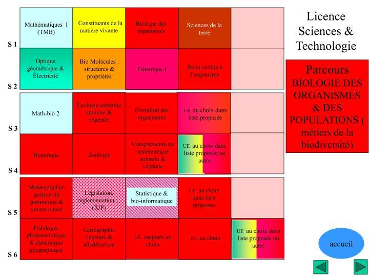 Licence              Sciences & Technologie