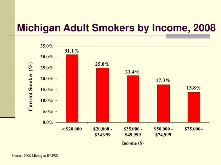 Michigan Adult Smokers by Income, 2008
