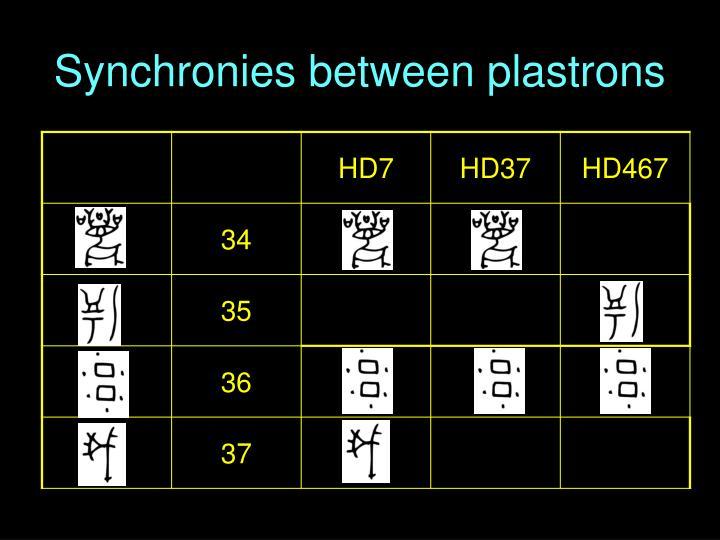 Synchronies between plastrons