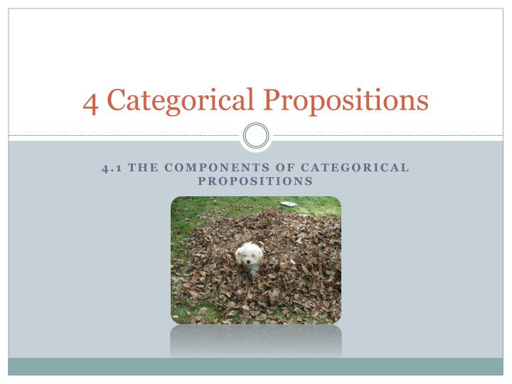 4 categorical propositions n.