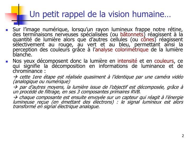 Un petit rappel de la vision humaine