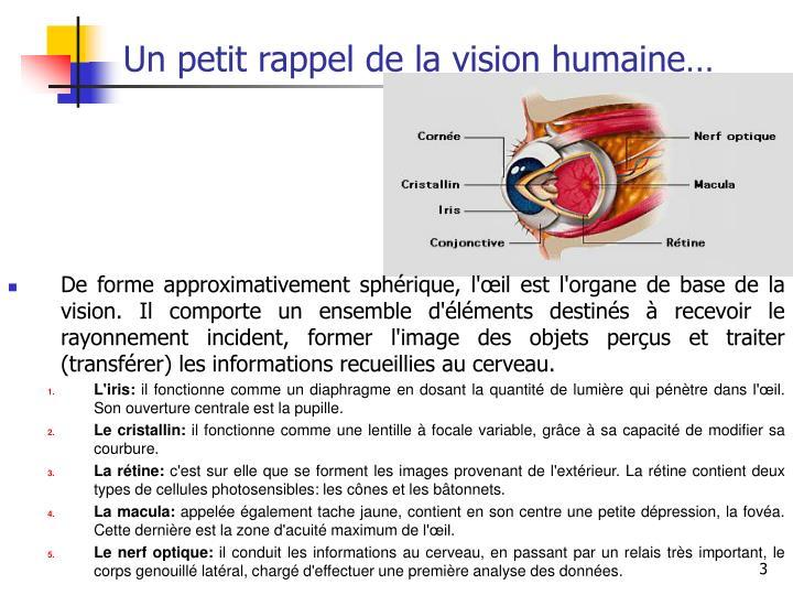 Un petit rappel de la vision humaine1