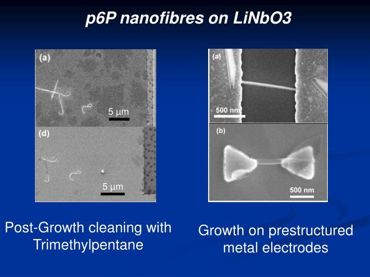 p6P nanofibres on LiNbO3