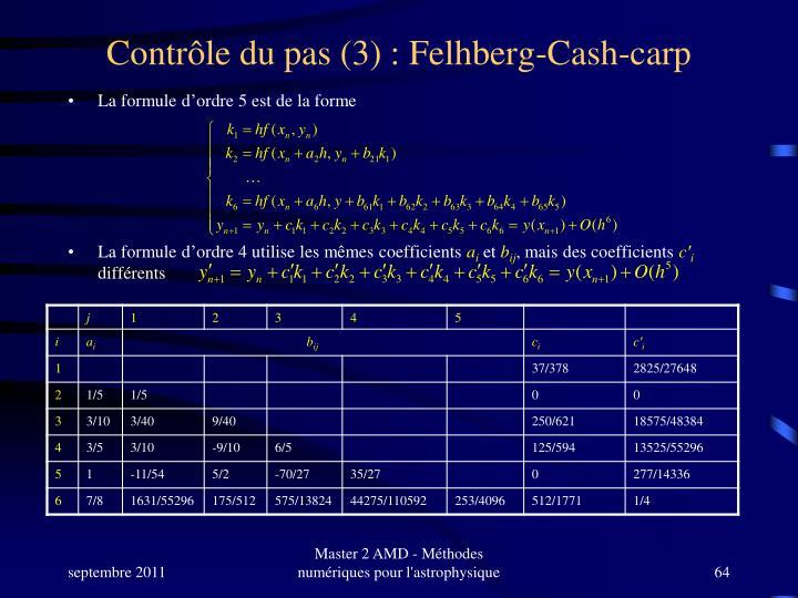 Contrôle du pas (3) : Felhberg-Cash-carp