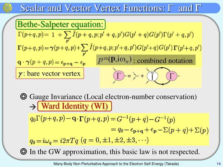 Scalar and Vector Vertex Functions: