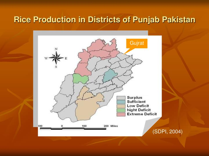 Rice Production in Districts of Punjab Pakistan