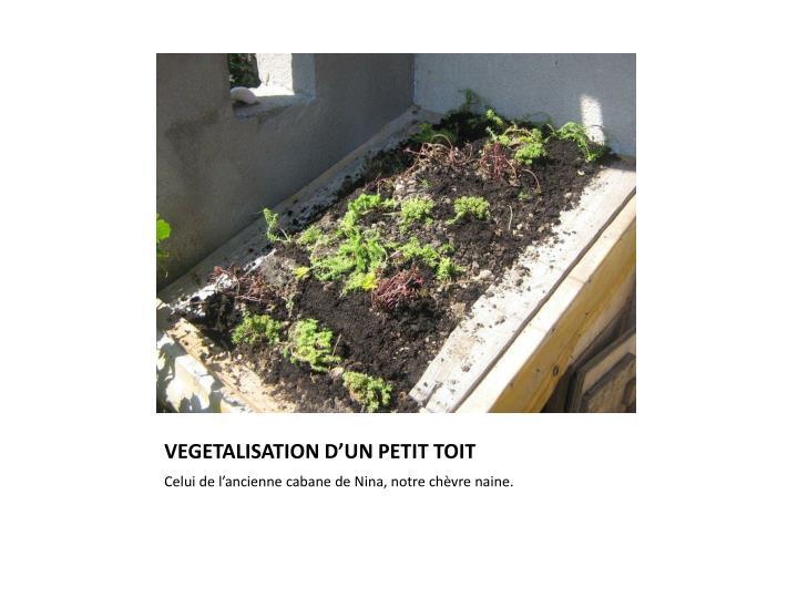VEGETALISATION D'UN PETIT TOIT