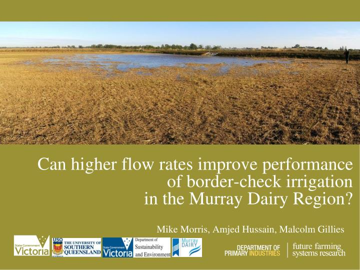 Can higher flow rates improve performance of border check irrigation in the murray dairy region