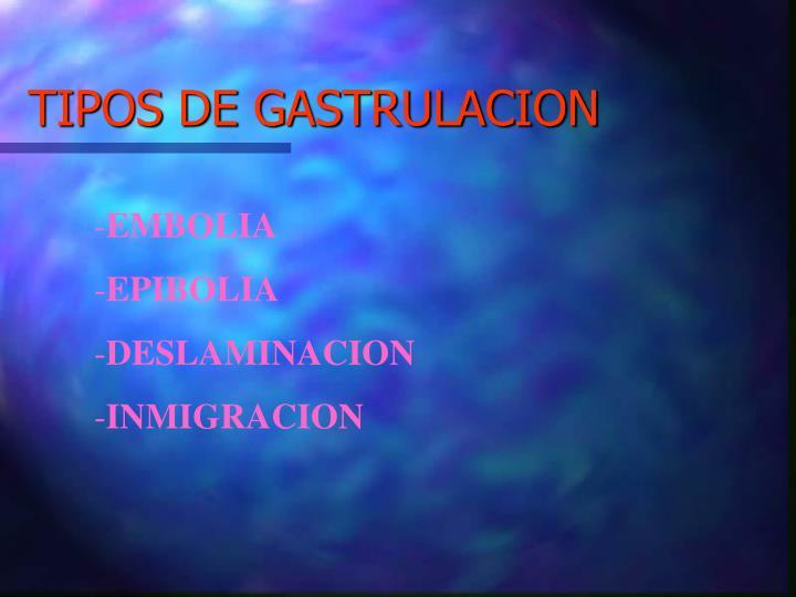 TIPOS DE GASTRULACION