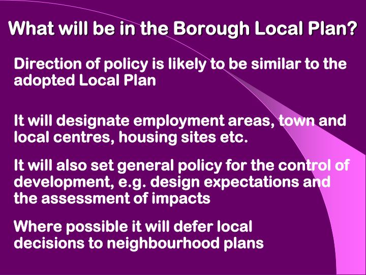 What will be in the Borough Local Plan?