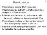 plasmid vectors