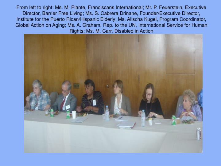 From left to right: Ms. M. Plante, Franciscans International; Mr. P. Feuerstein, Executive Director, Barrier Free Living; Ms. S. Cabrera Drinane, Founder/Executive Director, Institute for the Puerto Rican/Hispanic Elderly; Ms. Alischa Kugel, Program Coordinator, Global Action on Aging; Ms. A. Graham, Rep. to the UN, International Service for Human Rights; Ms. M. Carr, Disabled in Action