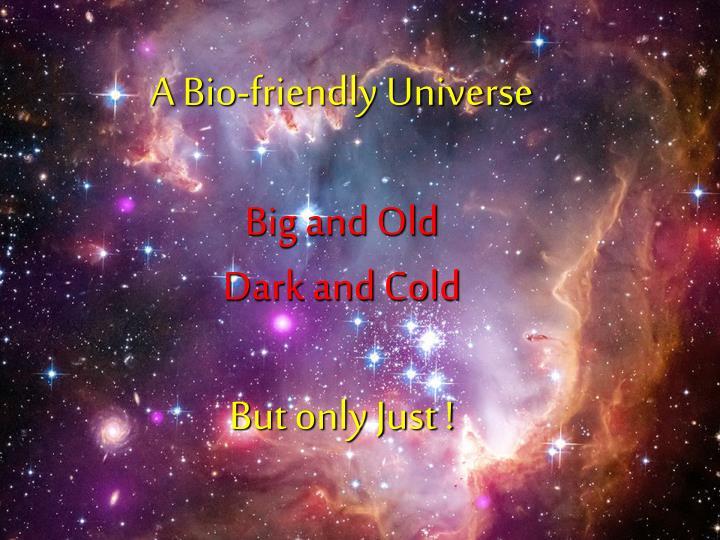 A Bio-friendly Universe