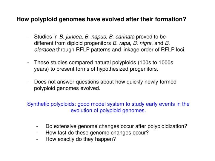 How polyploid genomes have evolved after their formation?