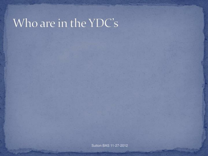 Who are in the YDC's
