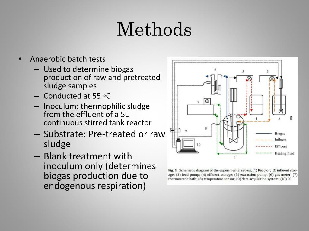 PPT - Presented by Reem Satti PowerPoint Presentation - ID