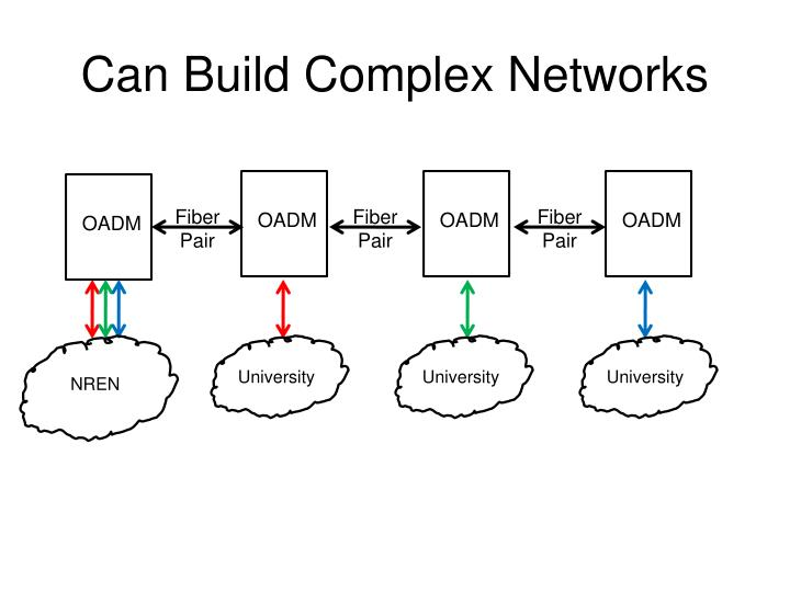 Can Build Complex Networks