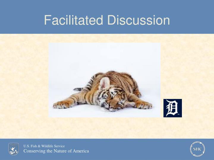 Facilitated Discussion