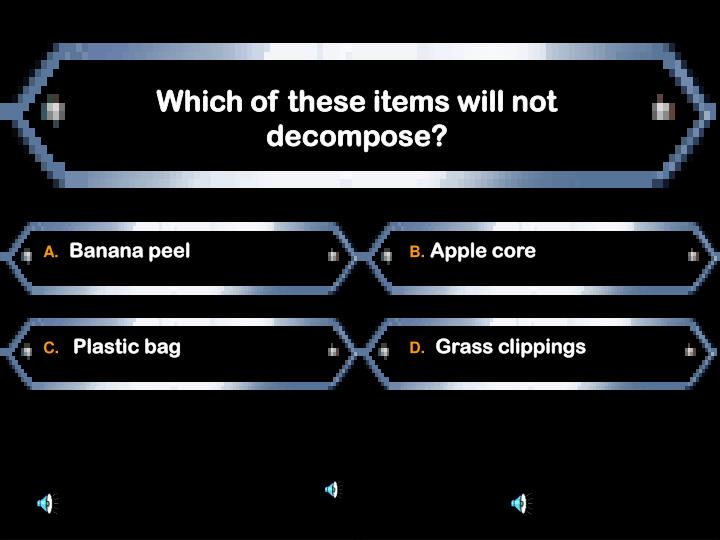 Which of these items will not decompose?