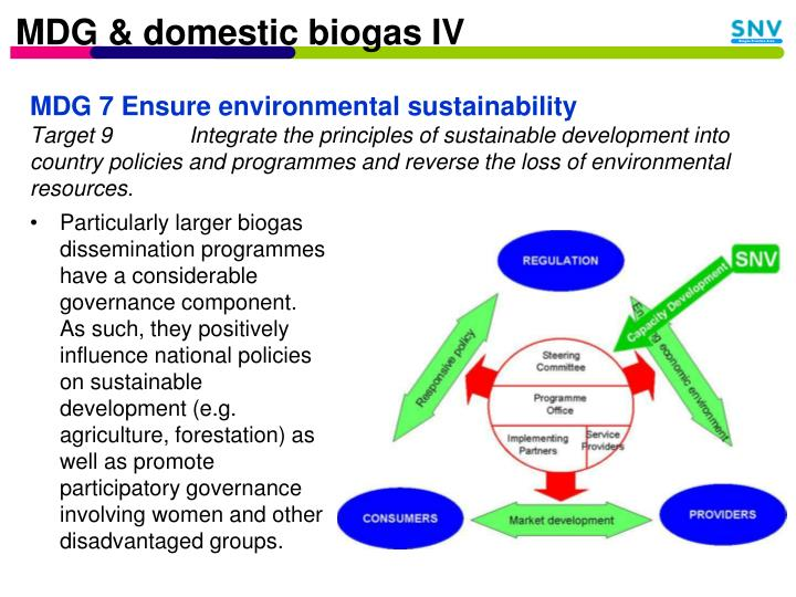 MDG & domestic biogas IV