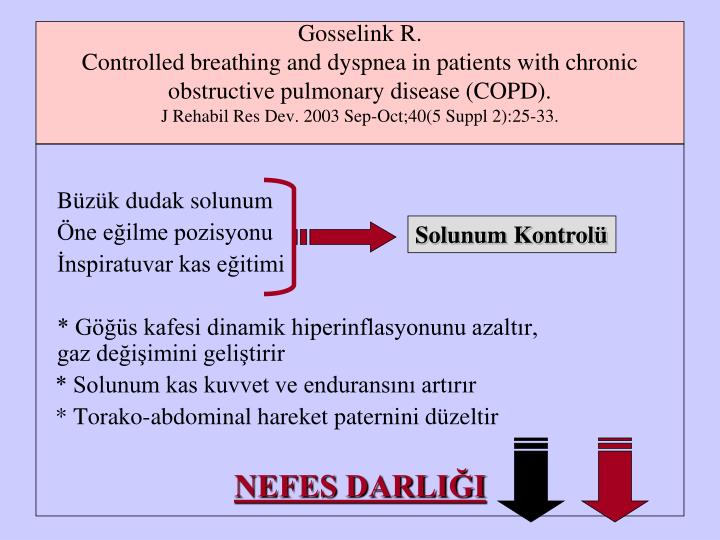 patient interaction reflection copd High icam-1 gene expression in pulmonary fibroblasts of copd patients: a reflection of an enhanced immunological function.