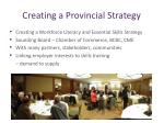 creating a provincial strategy