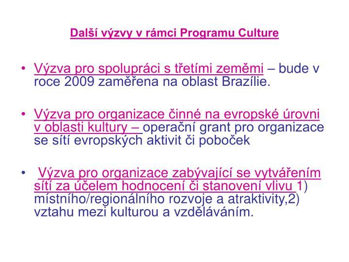 Další výzvy v rámci Programu Culture