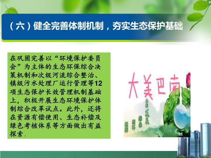 (六)健全完善体制机制,夯实生态保护基础