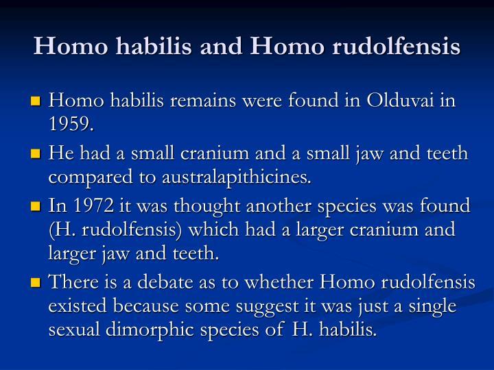 Homo habilis and Homo rudolfensis