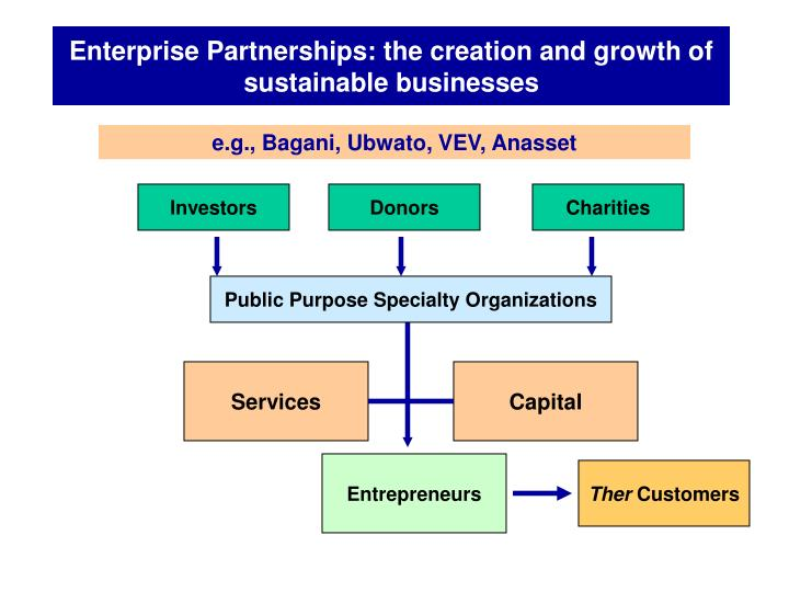 Enterprise Partnerships: the creation and growth of sustainable businesses
