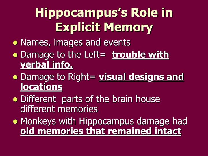 Hippocampus's Role in Explicit Memory