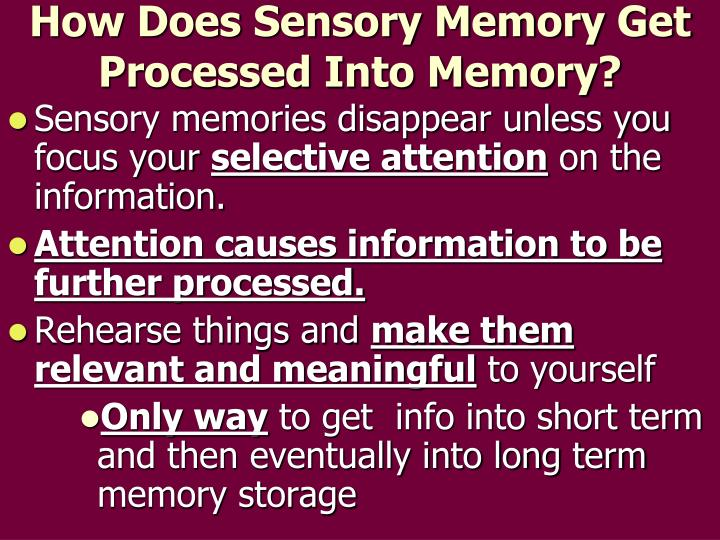 How Does Sensory Memory Get Processed Into Memory?